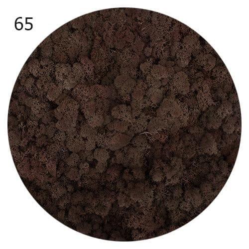 Obrazy z machu   dekorácie z machu   steny z machu   ekomoss