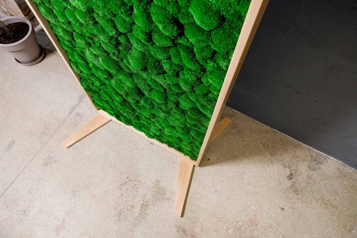 Obrazy z machu | dekorácie z machu | steny z machu | ekomoss